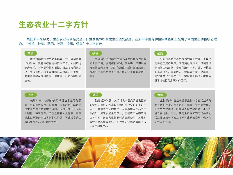 集结号手册5.jpg