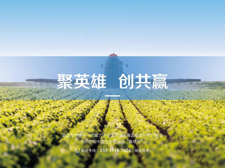 集结号手册8.jpg