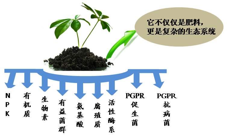 微生物菌肥.jpg